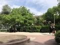 ブログ執筆中の公園6.3