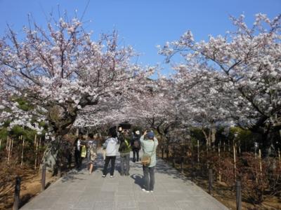 f:id:takashi1982:20150404222100j:image