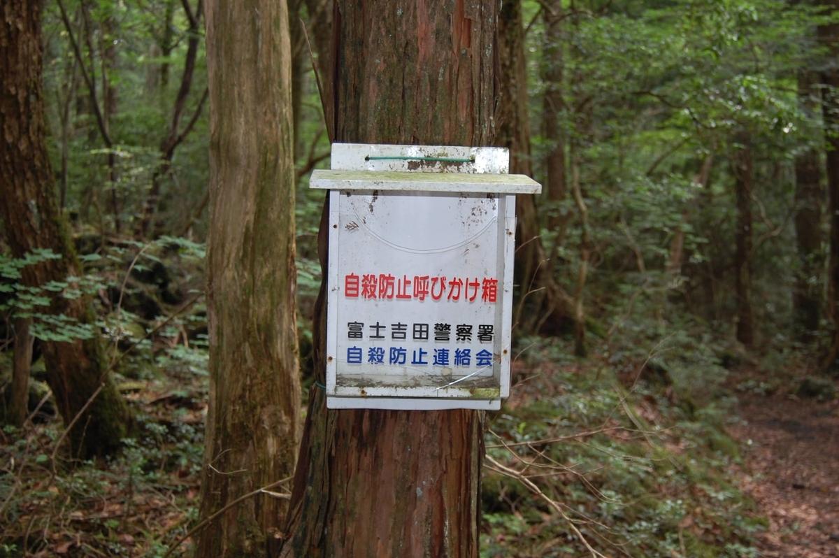 f:id:takashi_tk2001:20210521143023j:plain