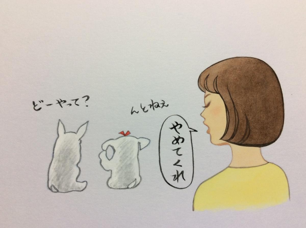 f:id:takashimari:20191003042115j:plain