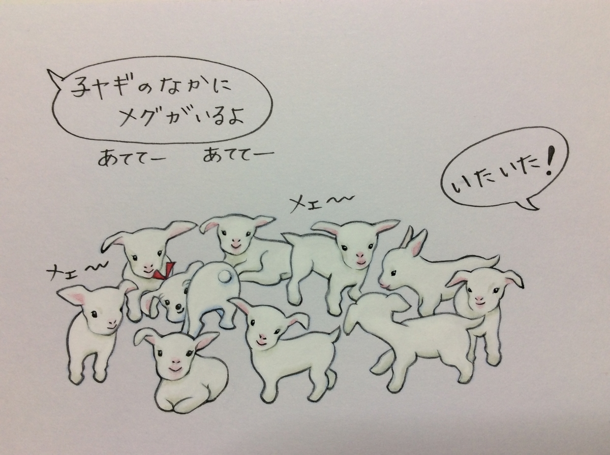 f:id:takashimari:20191210204252j:plain