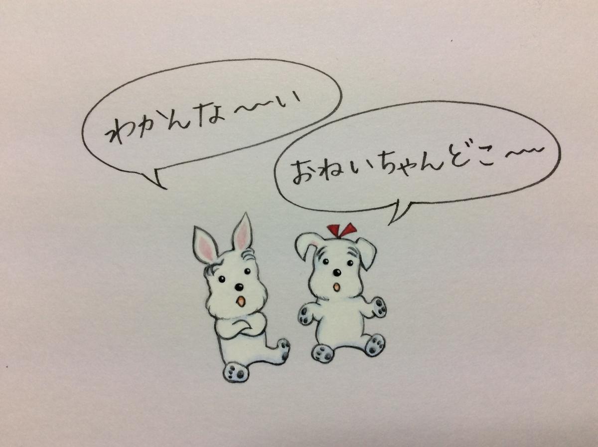 f:id:takashimari:20191210204426j:plain