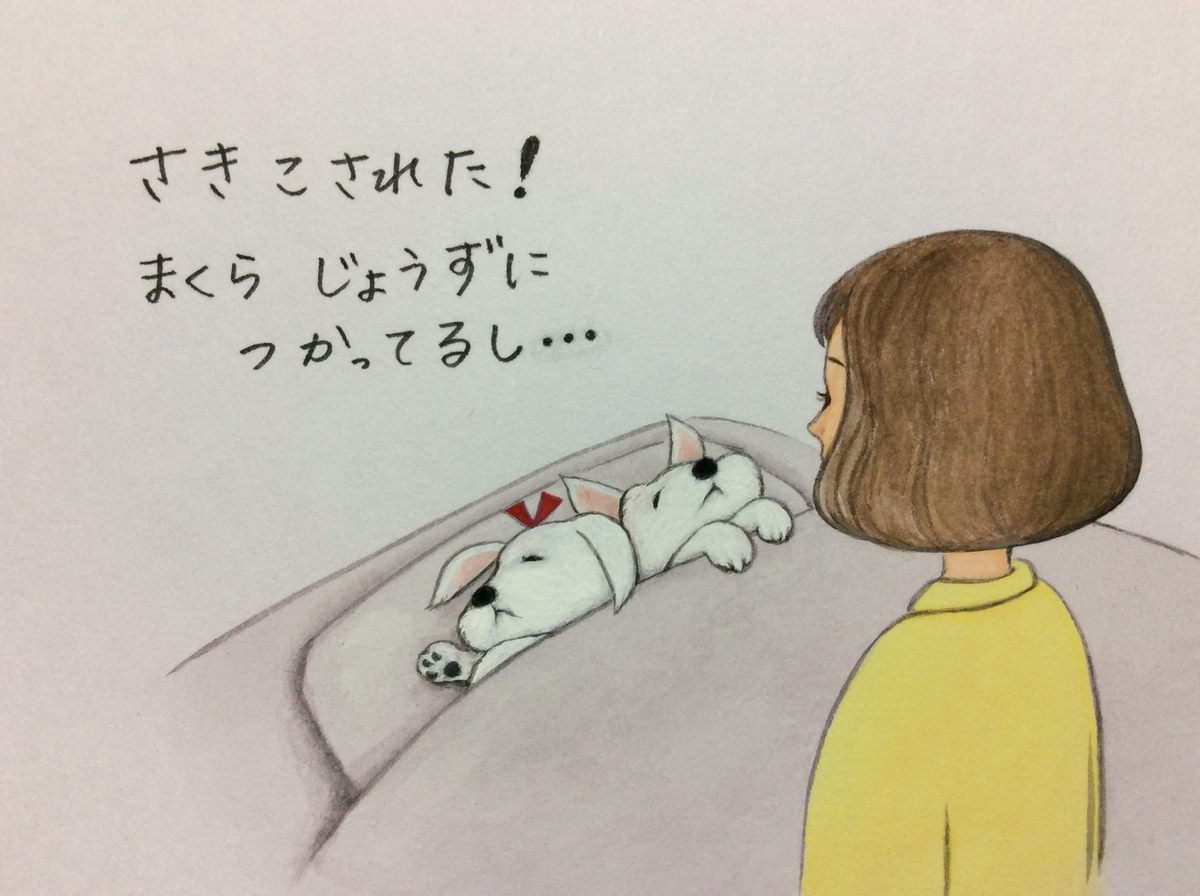 f:id:takashimari:20200124235926j:plain