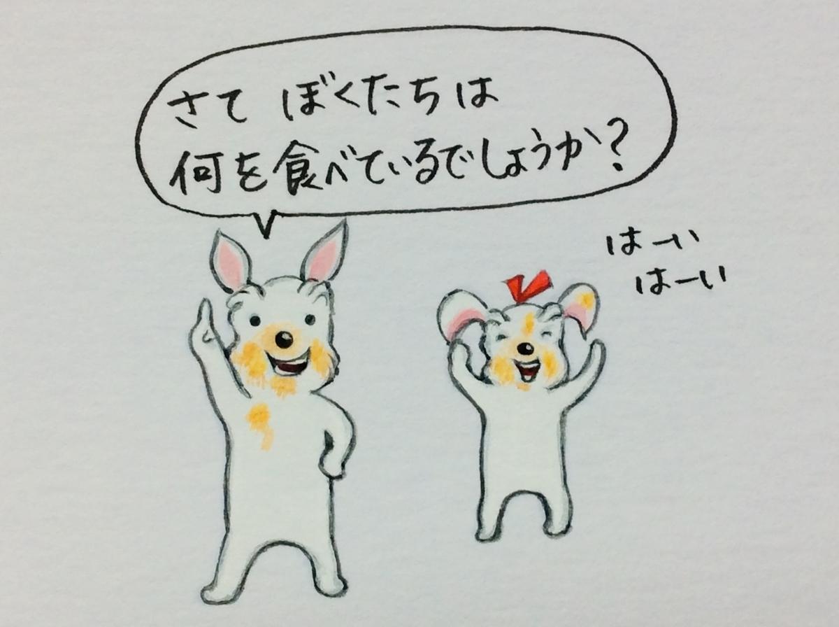 f:id:takashimari:20201006190545j:plain