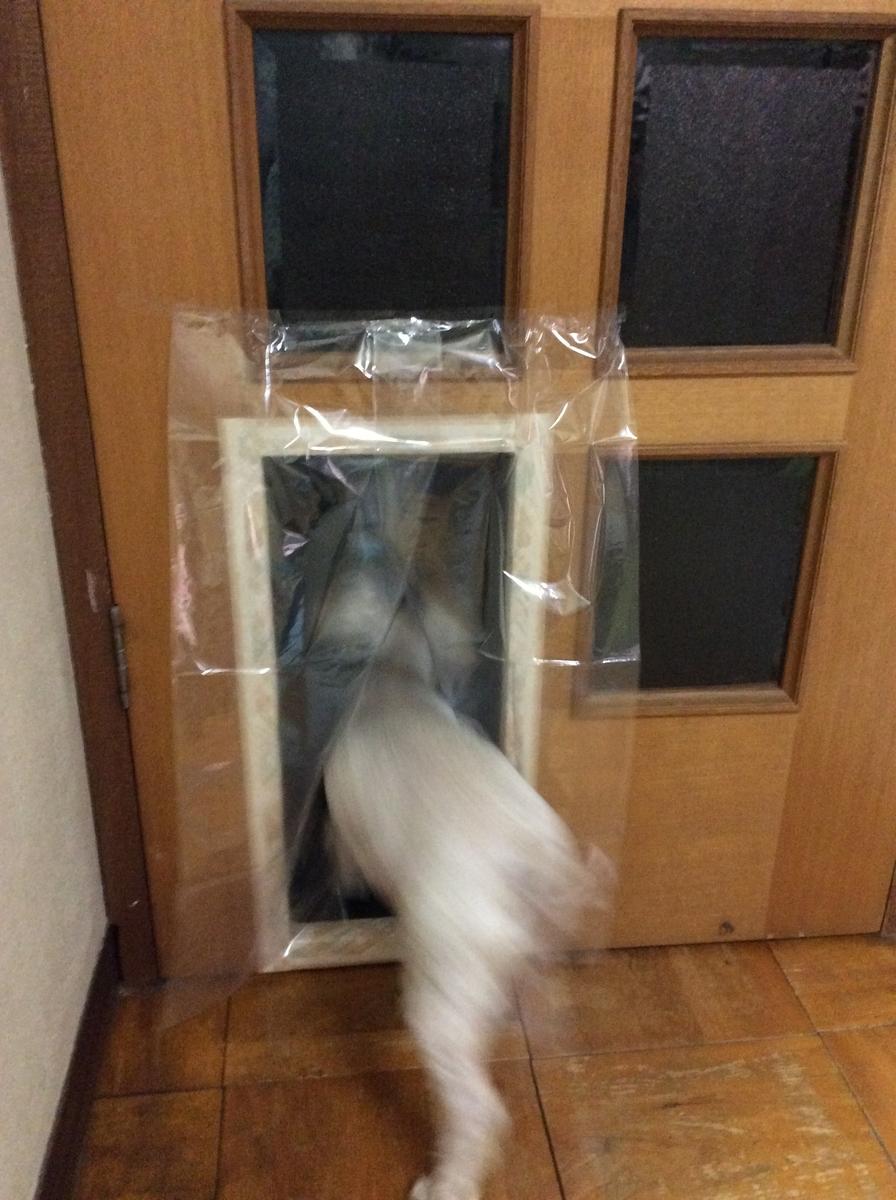 f:id:takashimari:20201223003511j:plain