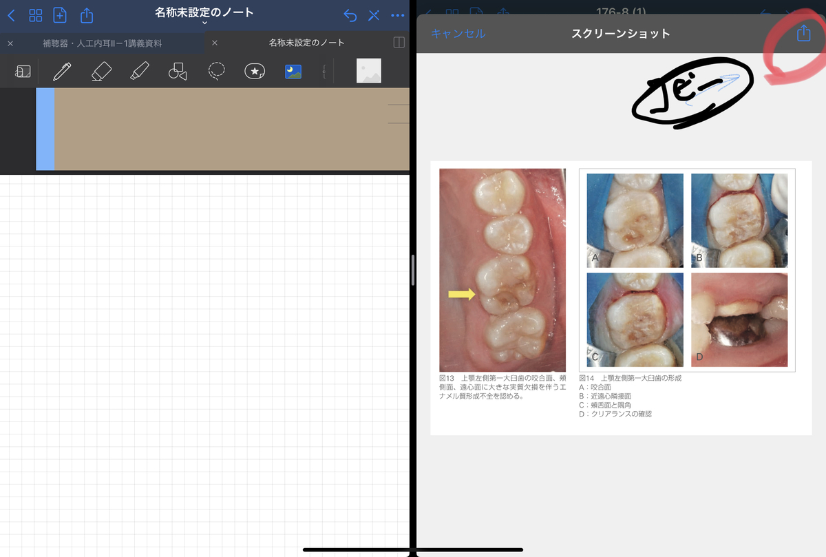 f:id:takashineozeon:20210515213800j:plain