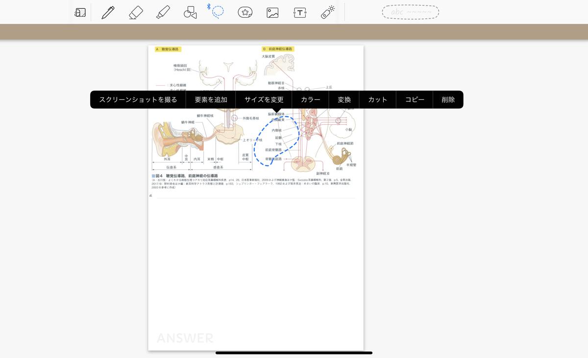 f:id:takashineozeon:20210528073350j:plain