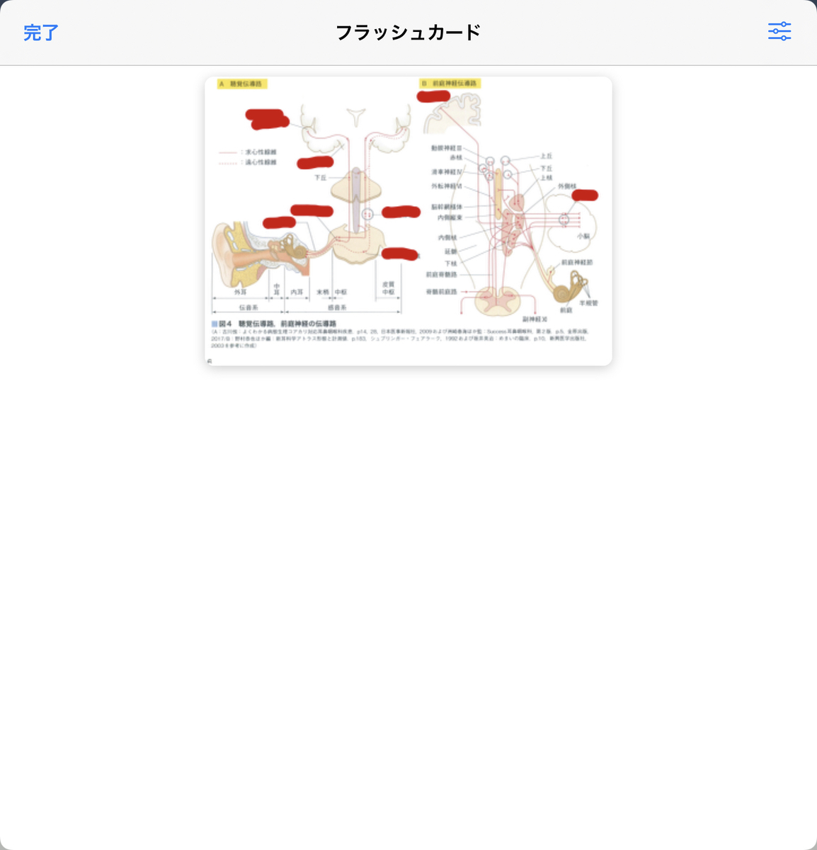 f:id:takashineozeon:20210528073901j:plain