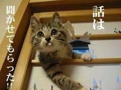 f:id:takatakagogo:20190817055335p:plain