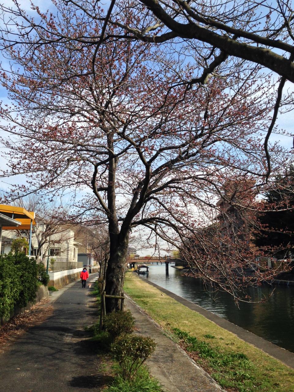f:id:takatakamanbou:20150328143458j:plain
