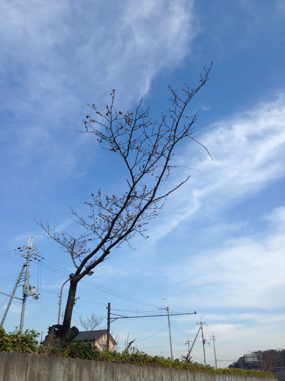 f:id:takatakamanbou:20150328143501j:plain