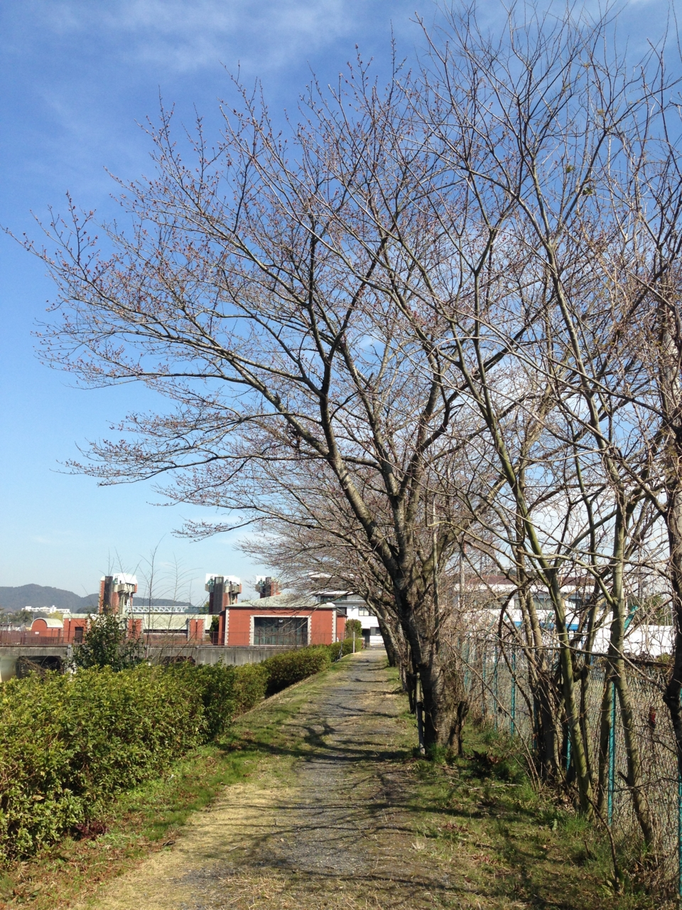 f:id:takatakamanbou:20150328143507j:plain