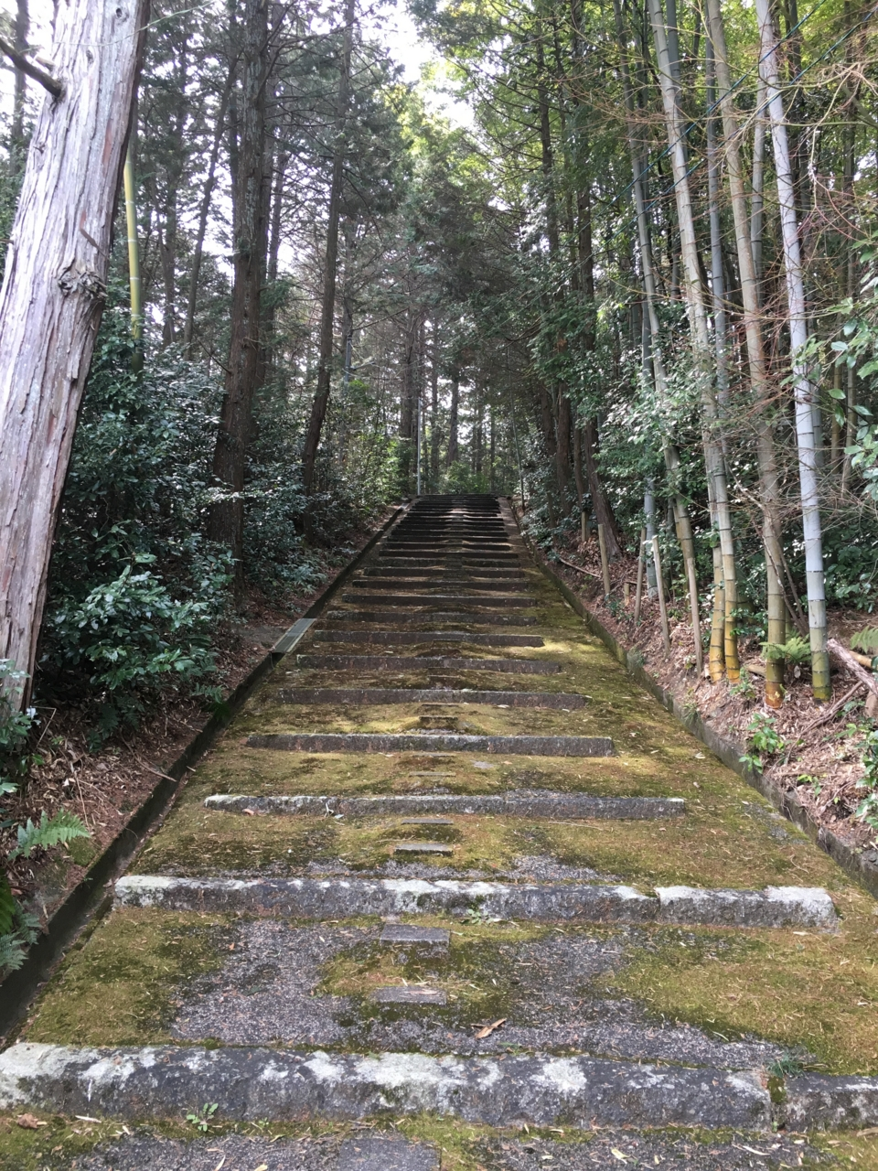 f:id:takatakamanbou:20170320215658j:plain