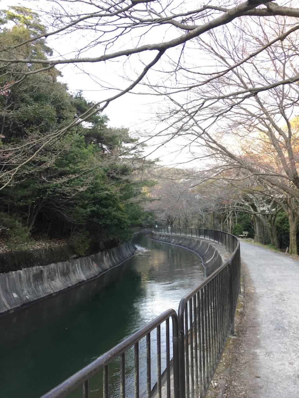 f:id:takatakamanbou:20170408213333j:plain