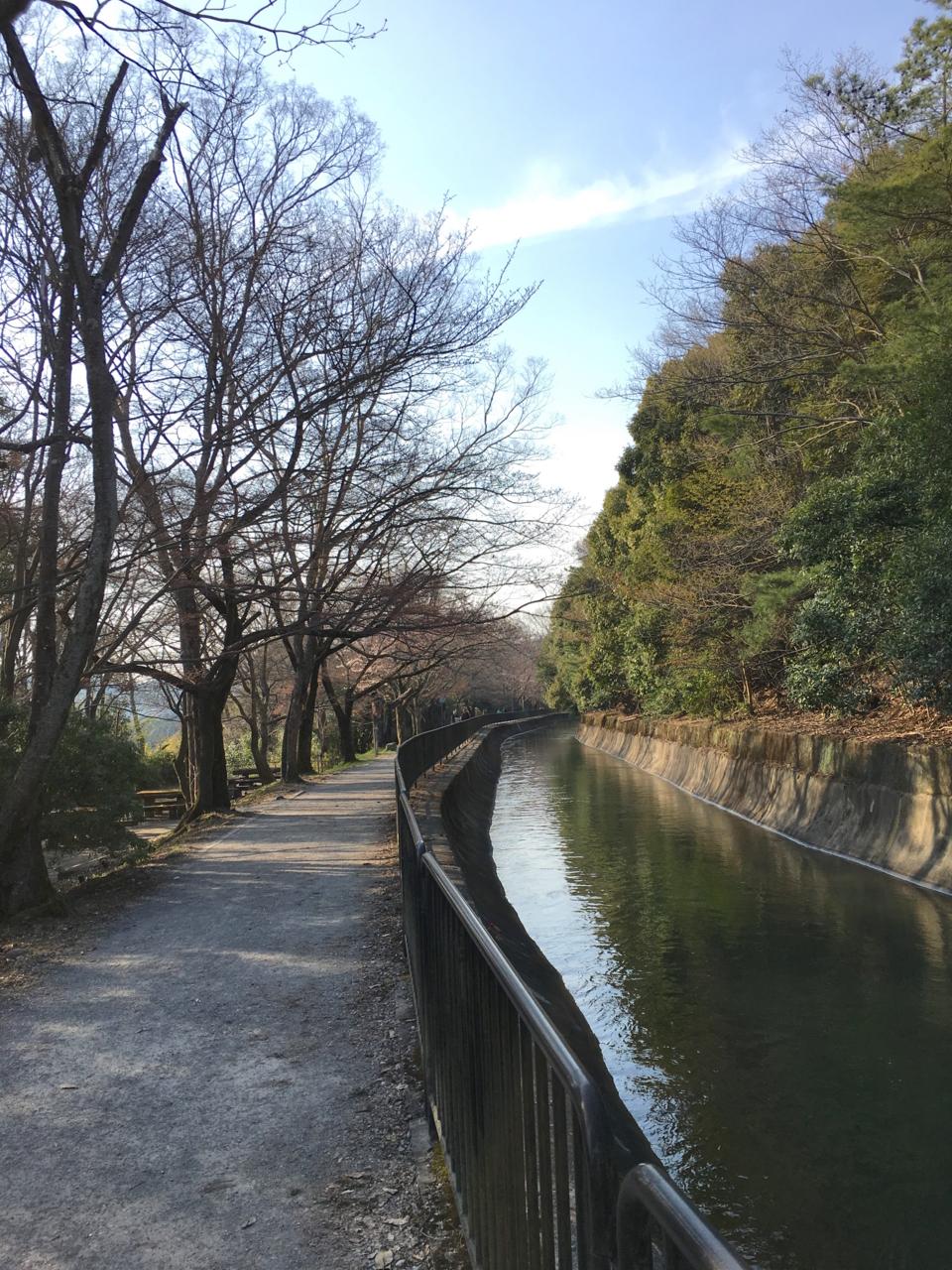 f:id:takatakamanbou:20170408213334j:plain