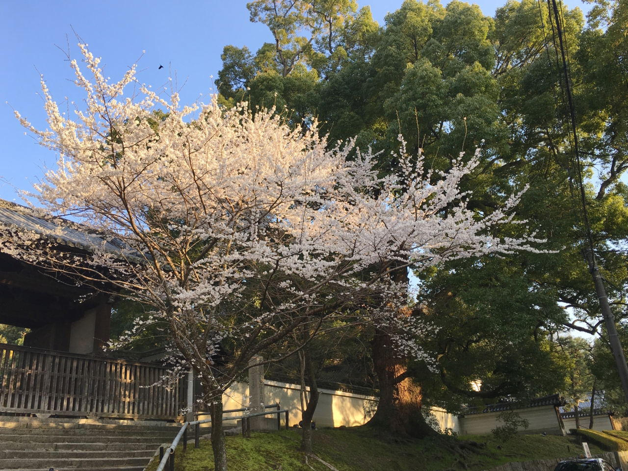 f:id:takatakamanbou:20170408213344j:plain