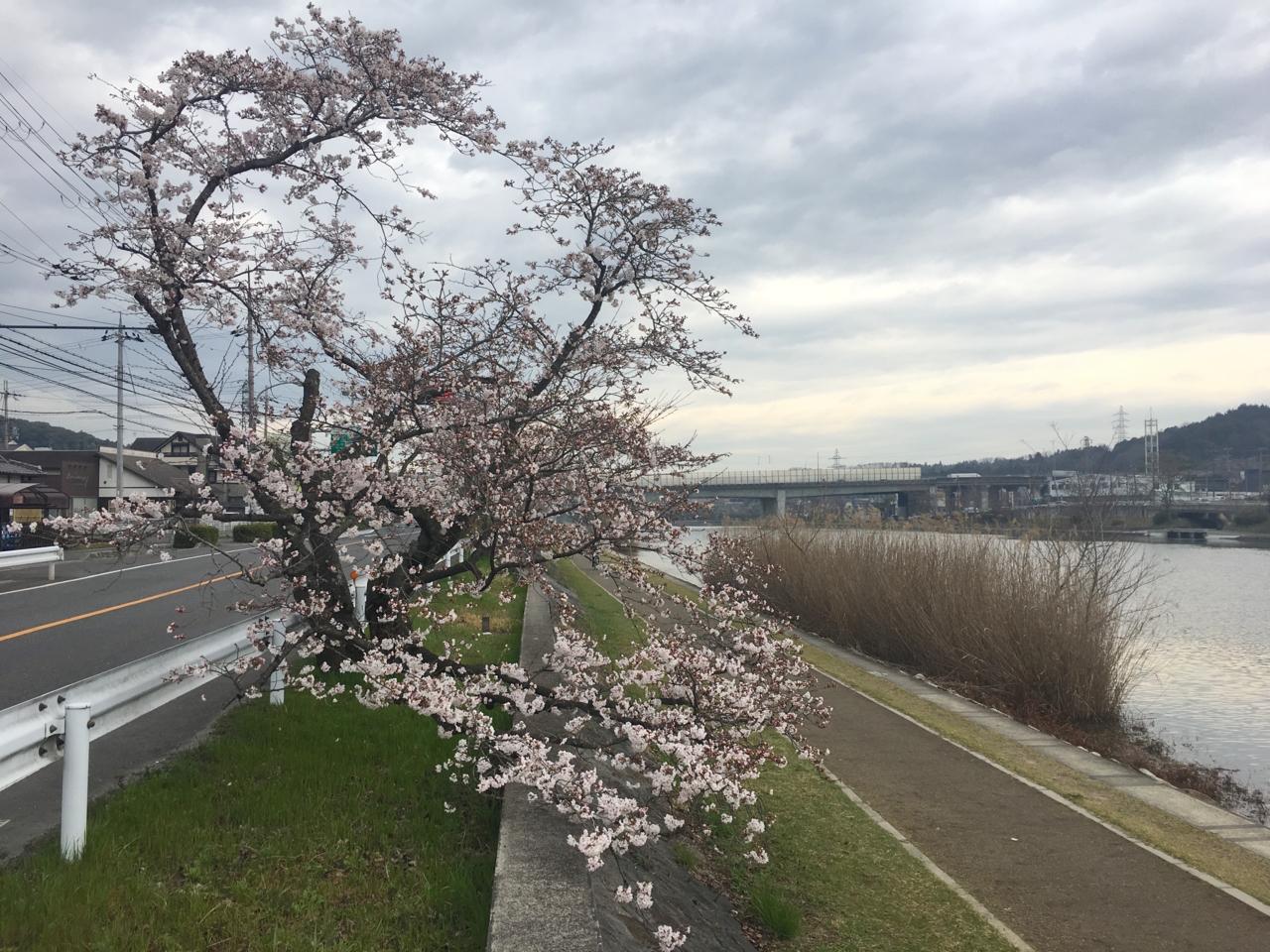 f:id:takatakamanbou:20170408224502j:plain