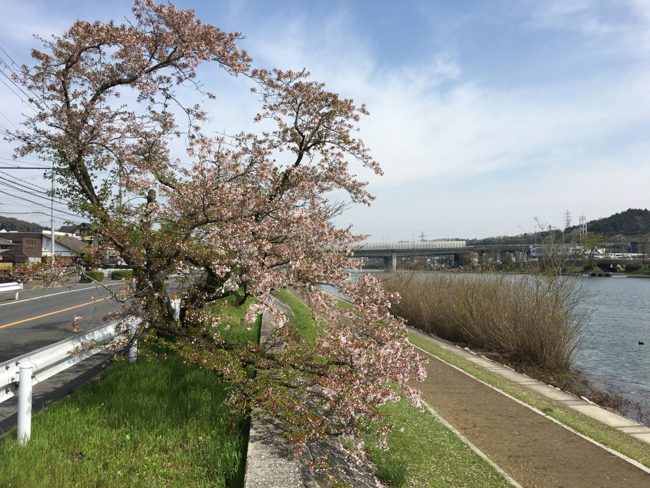 f:id:takatakamanbou:20170423223447j:plain