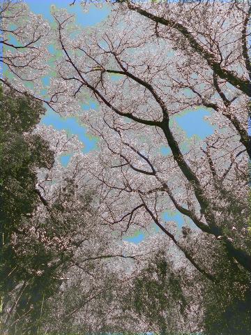 f:id:takatakamanbou:20170815212052p:plain