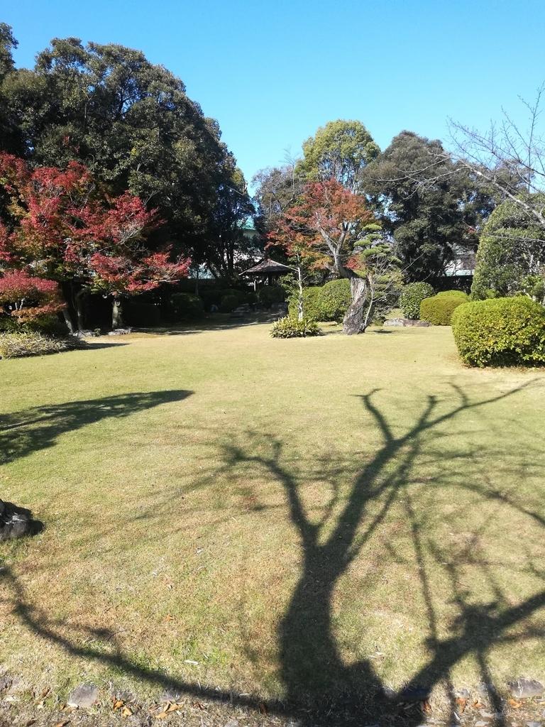 有楽苑の日本庭園