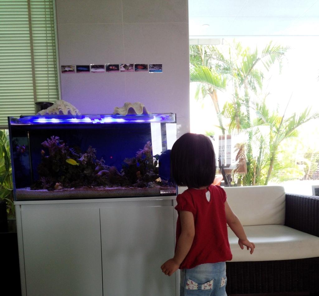 ホテルグランビューガーデン沖縄のロビーには熱帯魚が