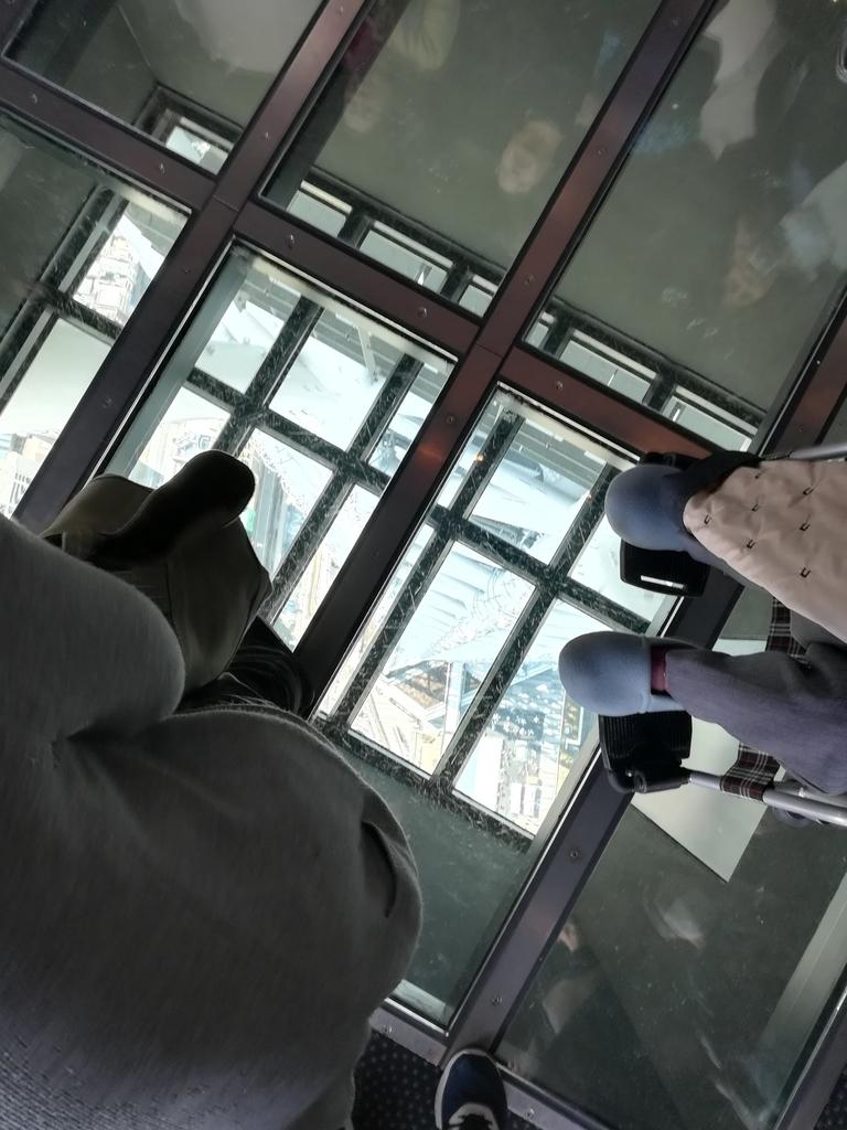 東京スカイツリーから真下を見てみよう