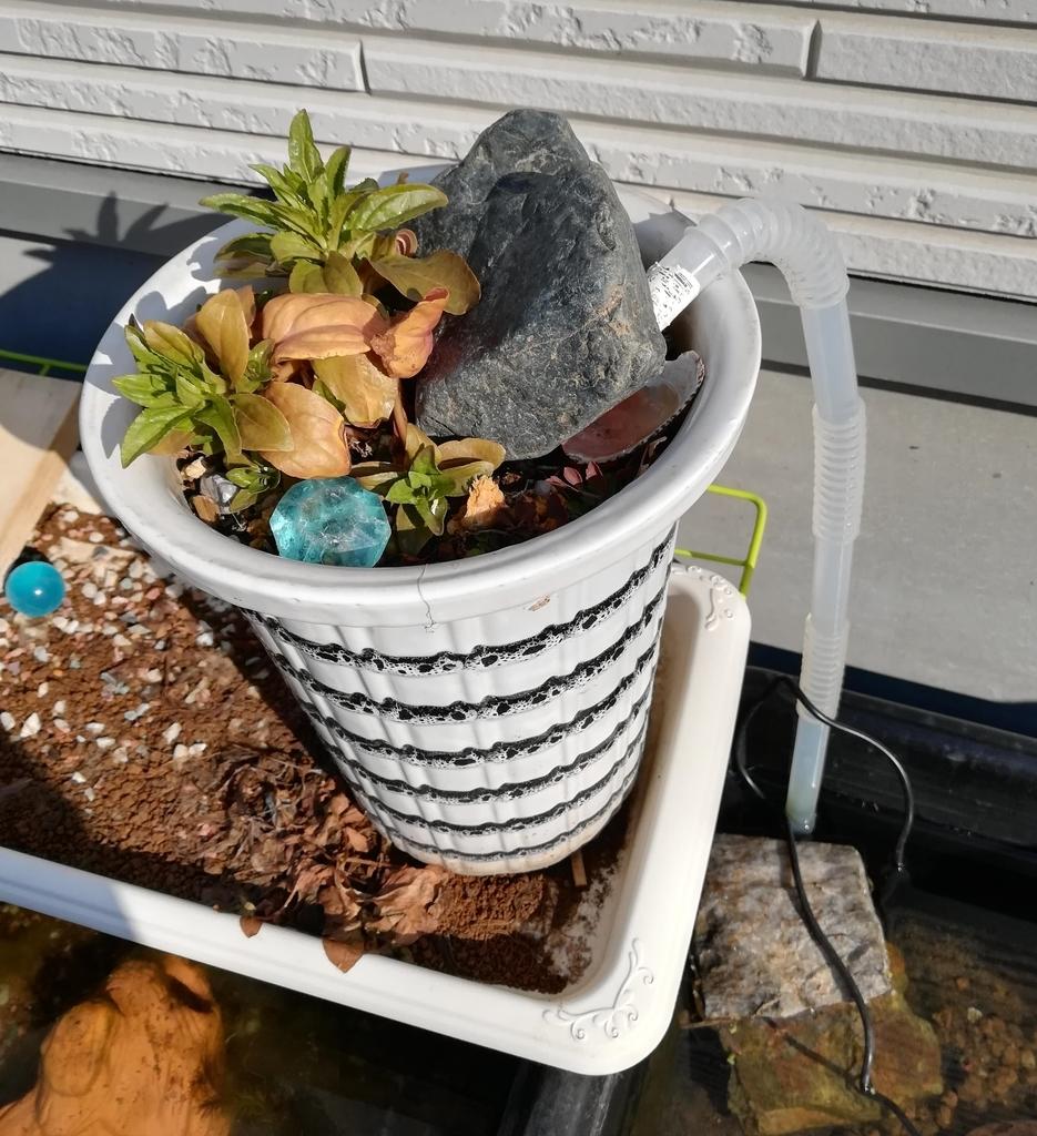 水をろ過する役割がある植木鉢