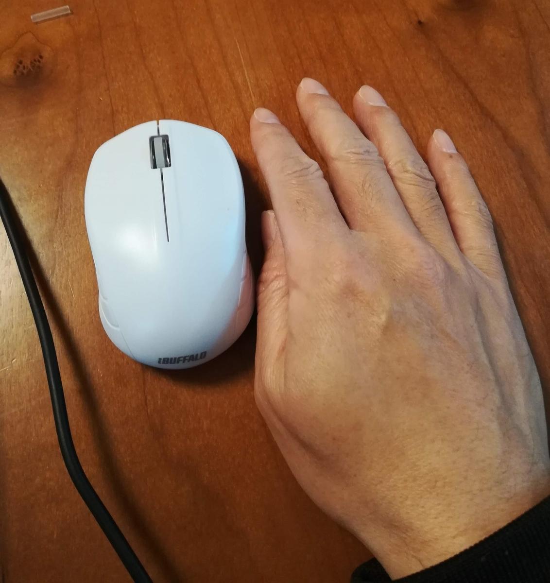 手と比べるとコンパクトさがよくわかります。