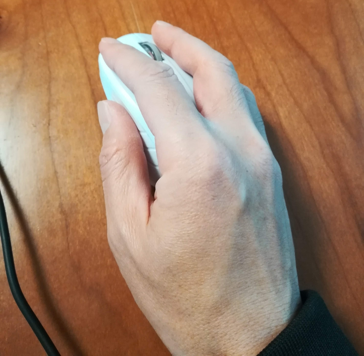 手をのせるとマウスはすっぽり隠れてしまう