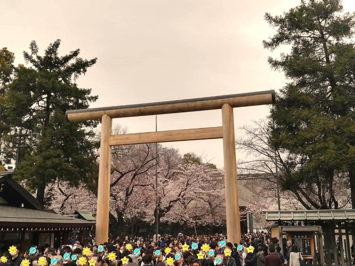 靖国神社にも桜がたくさんありますよ