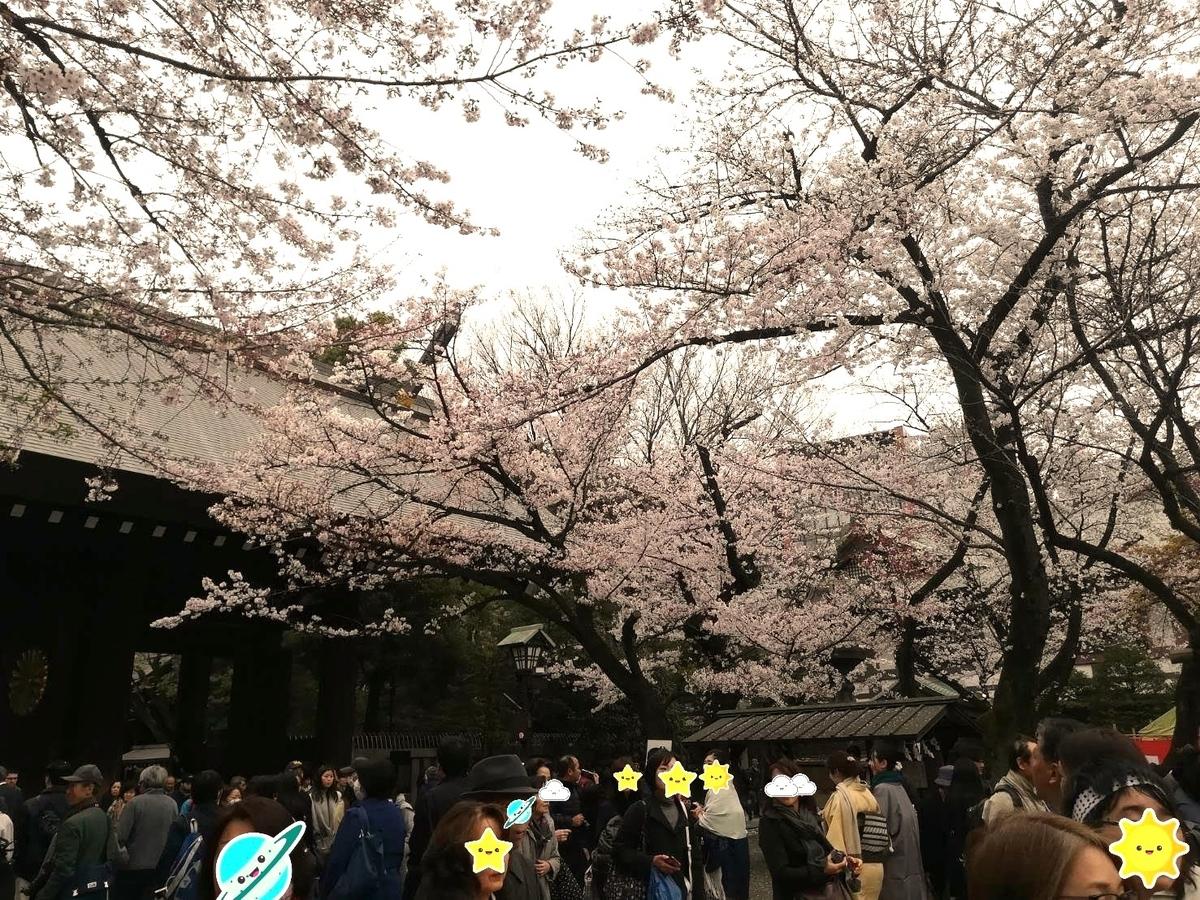 寒い週末でしたが春を求めてたくさんの人が桜を見に来ていました!
