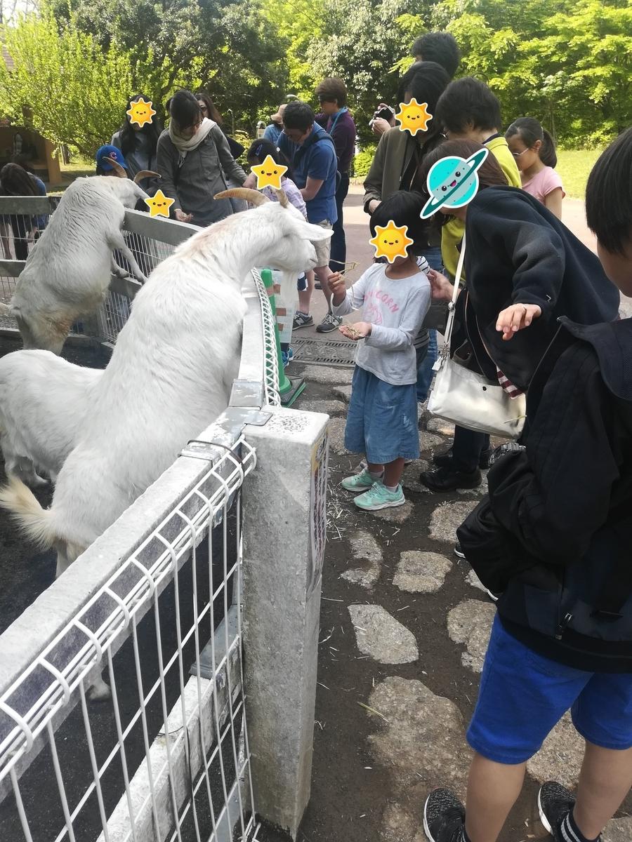 小田原わんぱくらんどでは動物たちにエサやりができます