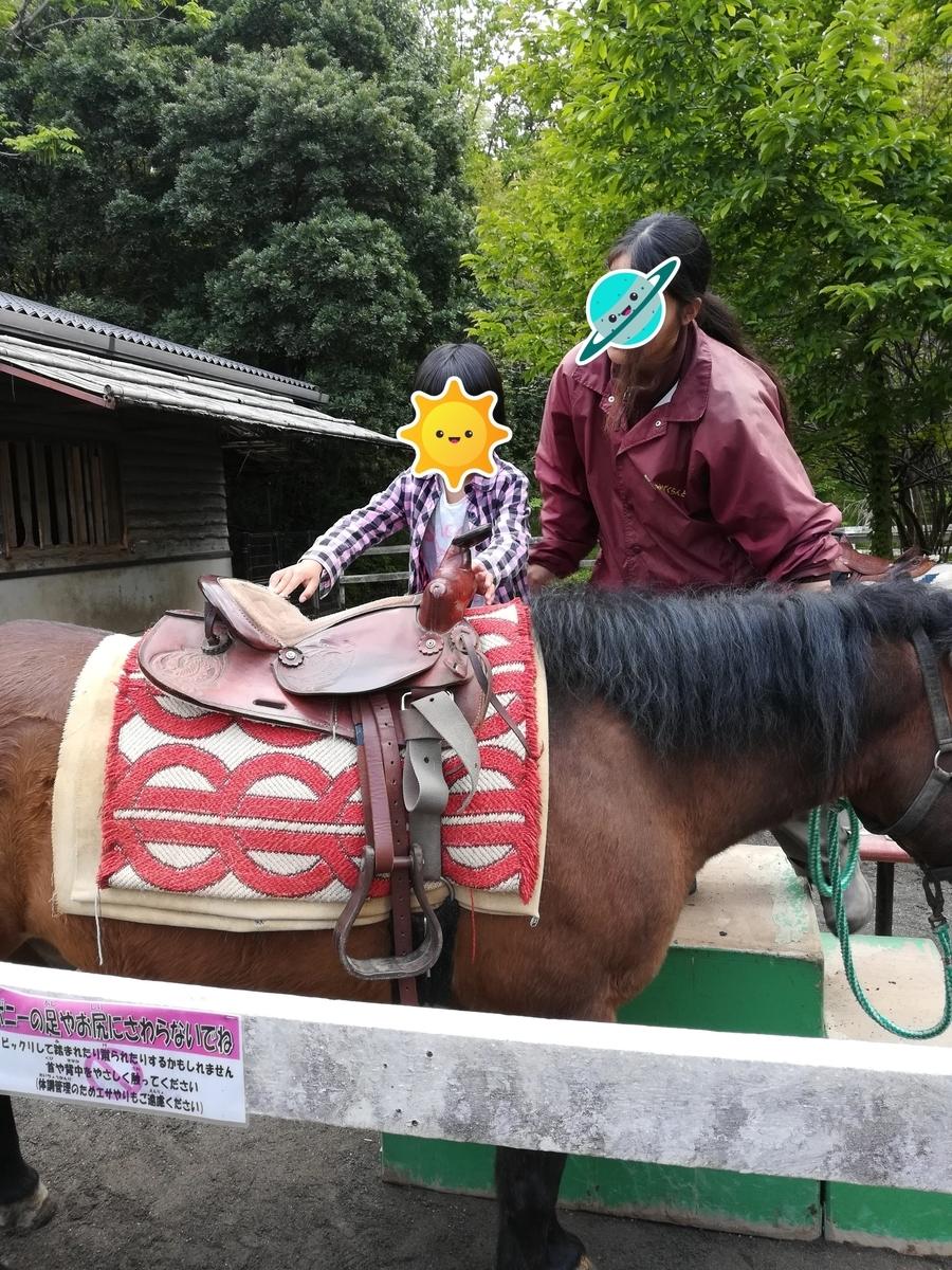 小田原わんぱくランドでポニーの乗馬に挑戦