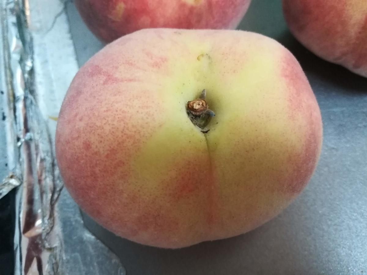 この桃の感じはまだ2,3日置いておいた方が良さそうです。