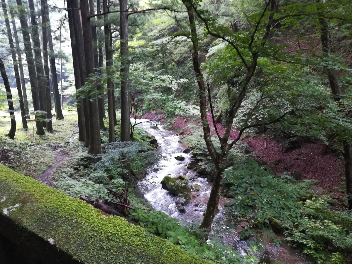 参道の途中には沢や滝が見られます