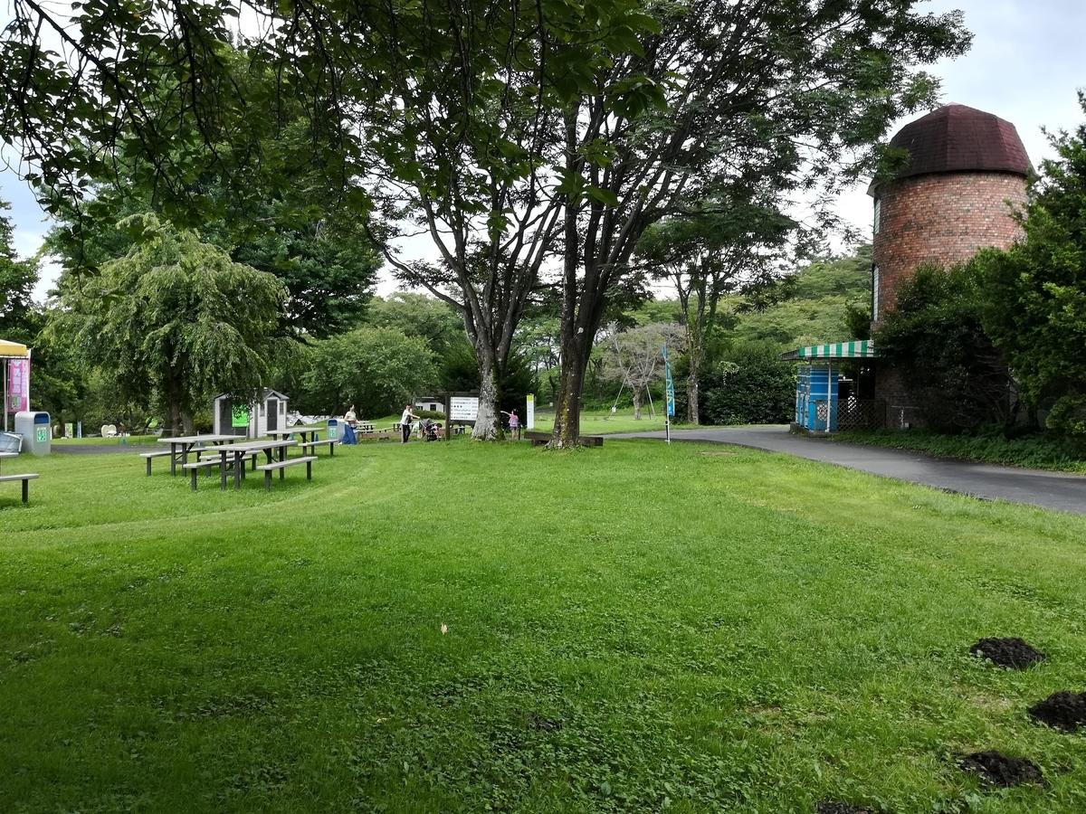 芝生でピクニックも楽しそうですね!