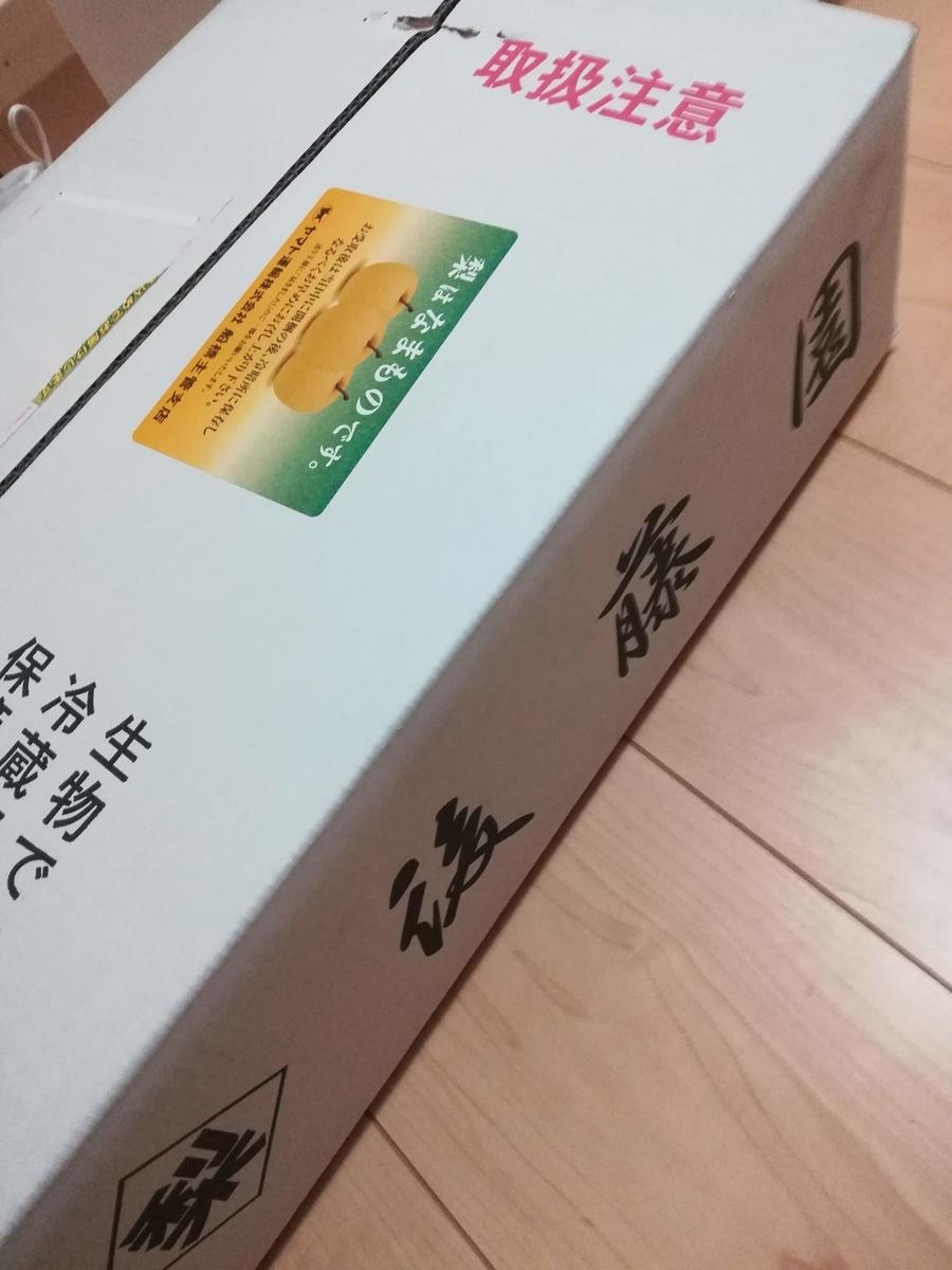 千葉県市川市は梨の名産地なのです!