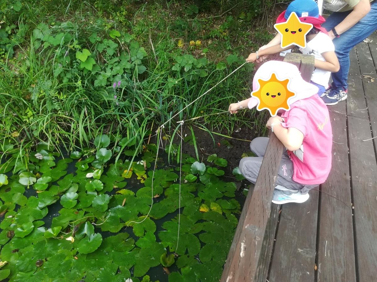 ザリガニがいっぱい釣れました!