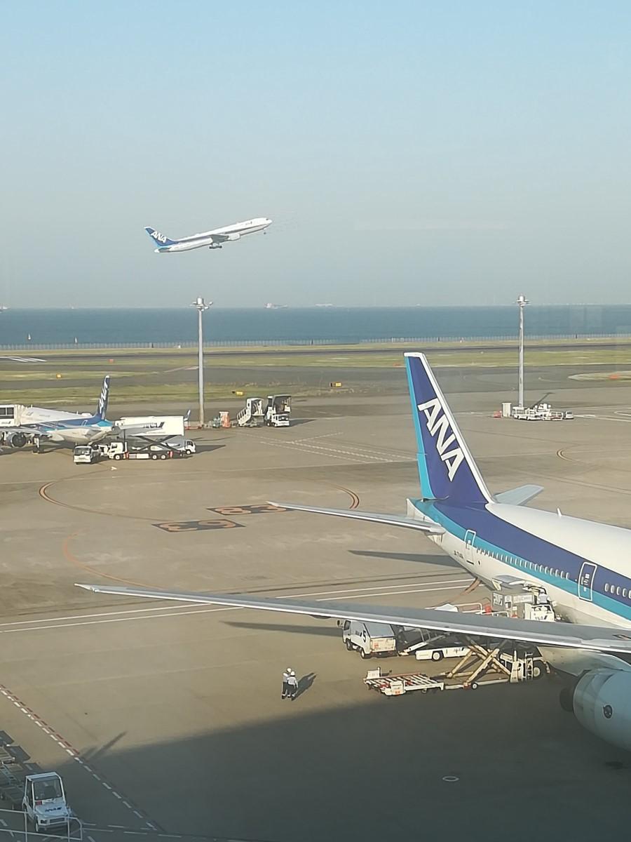 マイルを活用して沖縄に行こう!