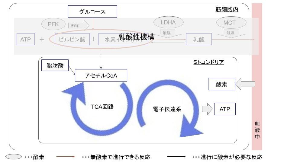 f:id:takato77:20201007175422j:plain