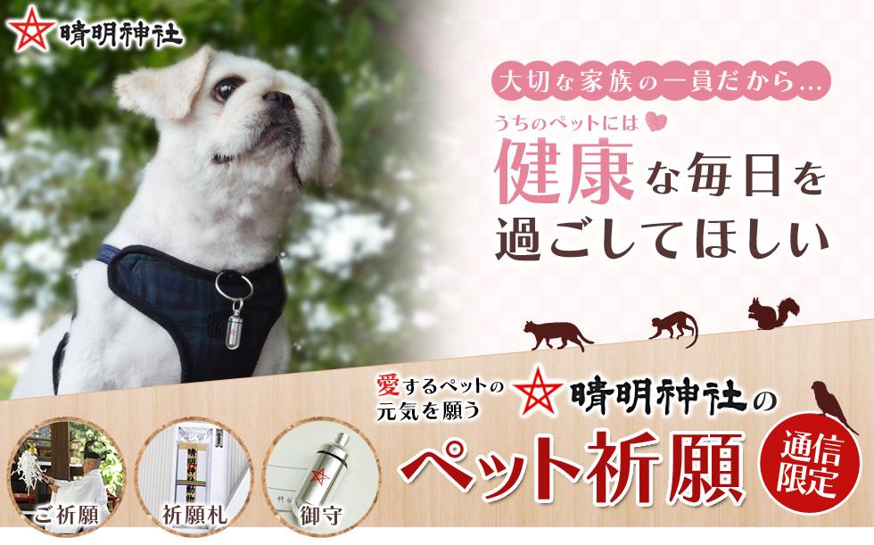 f:id:takatoki_hojo:20160624225833j:plain