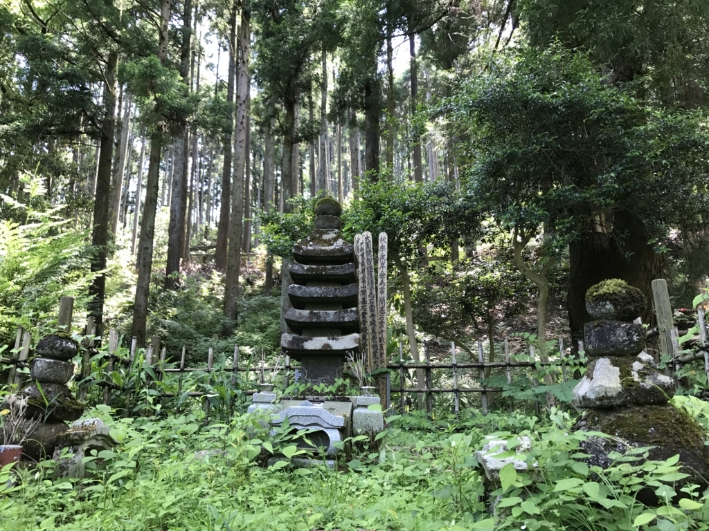 f:id:takatoki_hojo:20170604173227j:plain