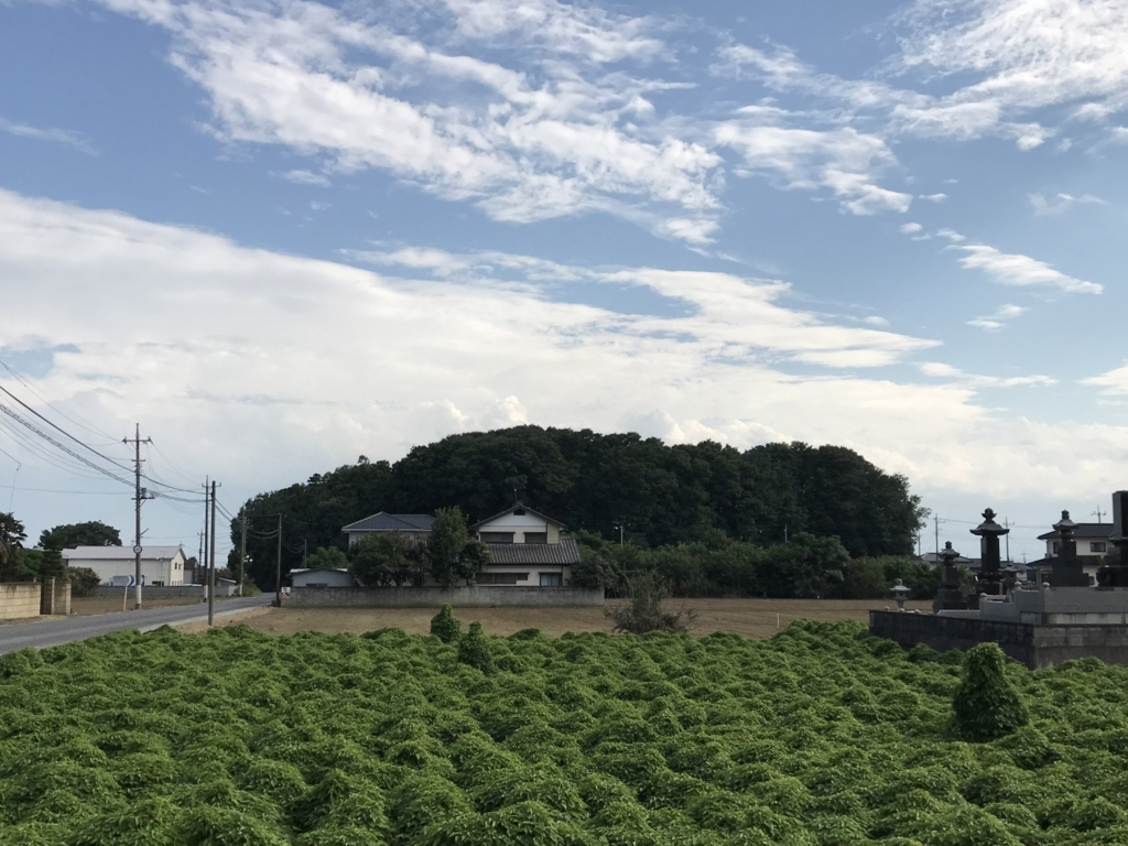f:id:takatoki_hojo:20171126155521j:plain