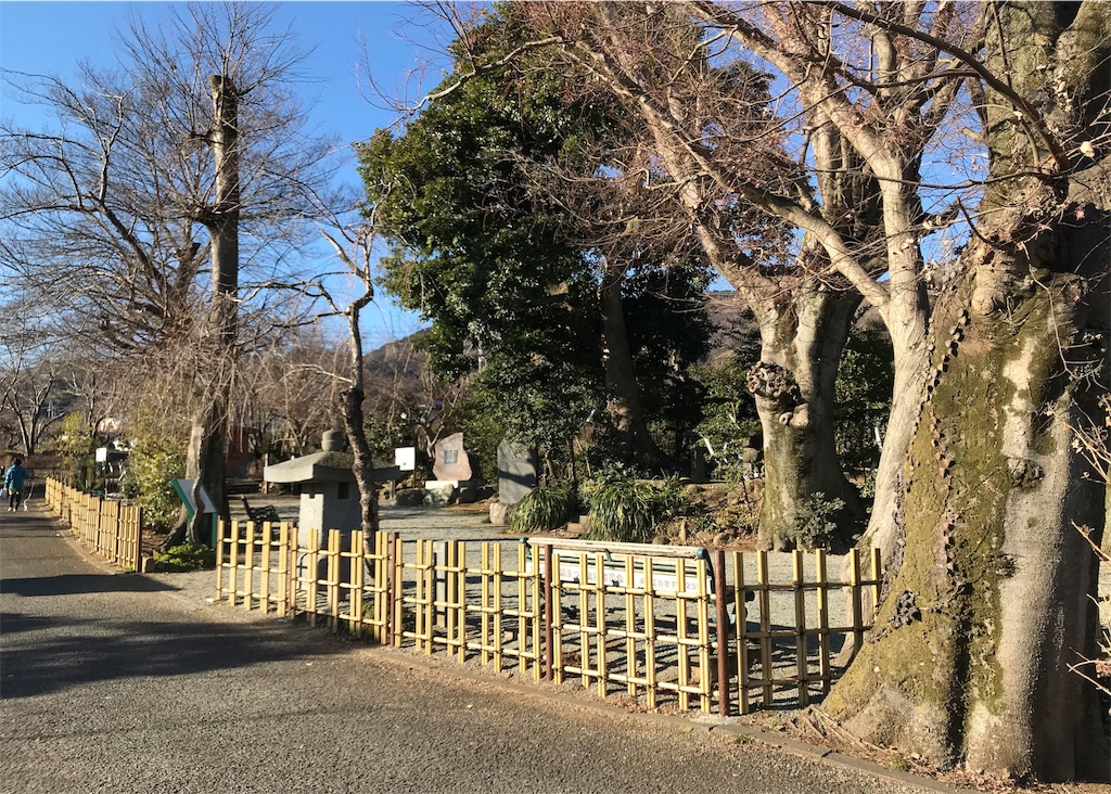 f:id:takatoki_hojo:20190211131015j:image