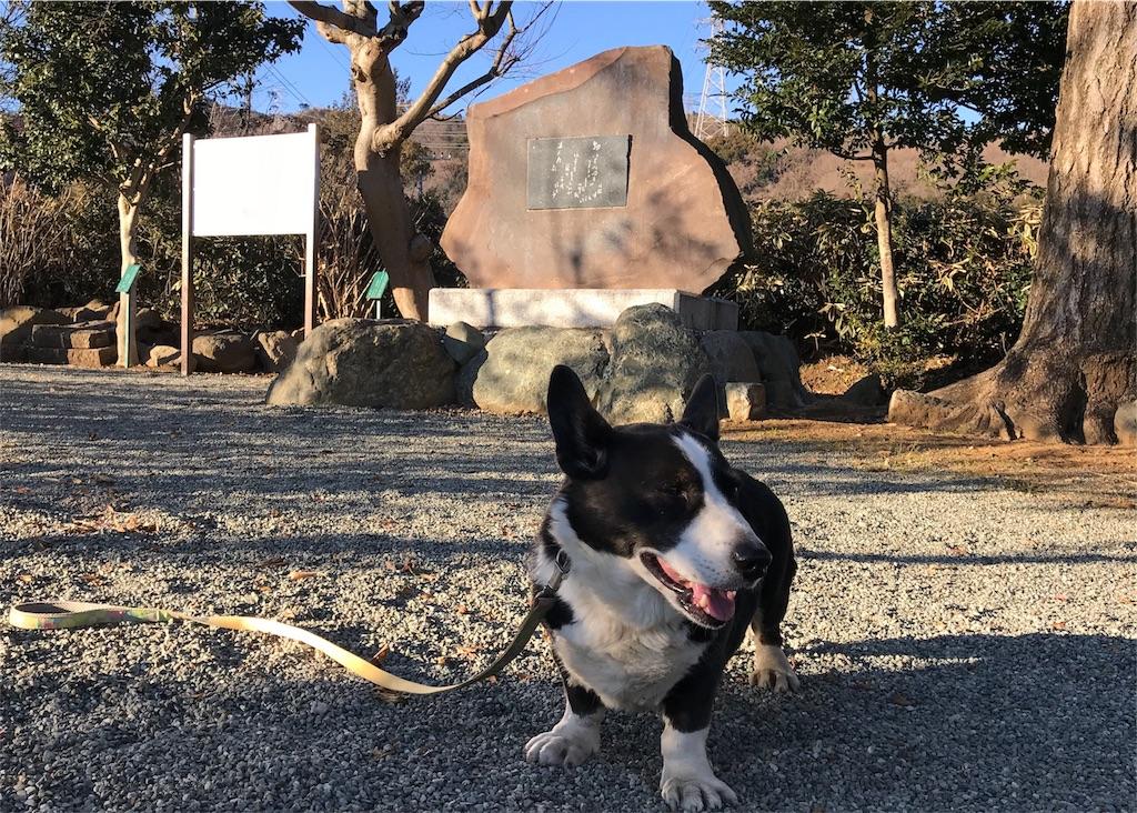 f:id:takatoki_hojo:20190211150905j:image
