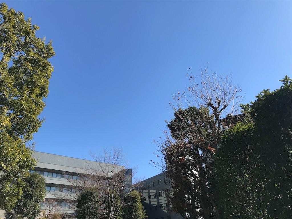 f:id:takatoshi0905:20190113002144j:image