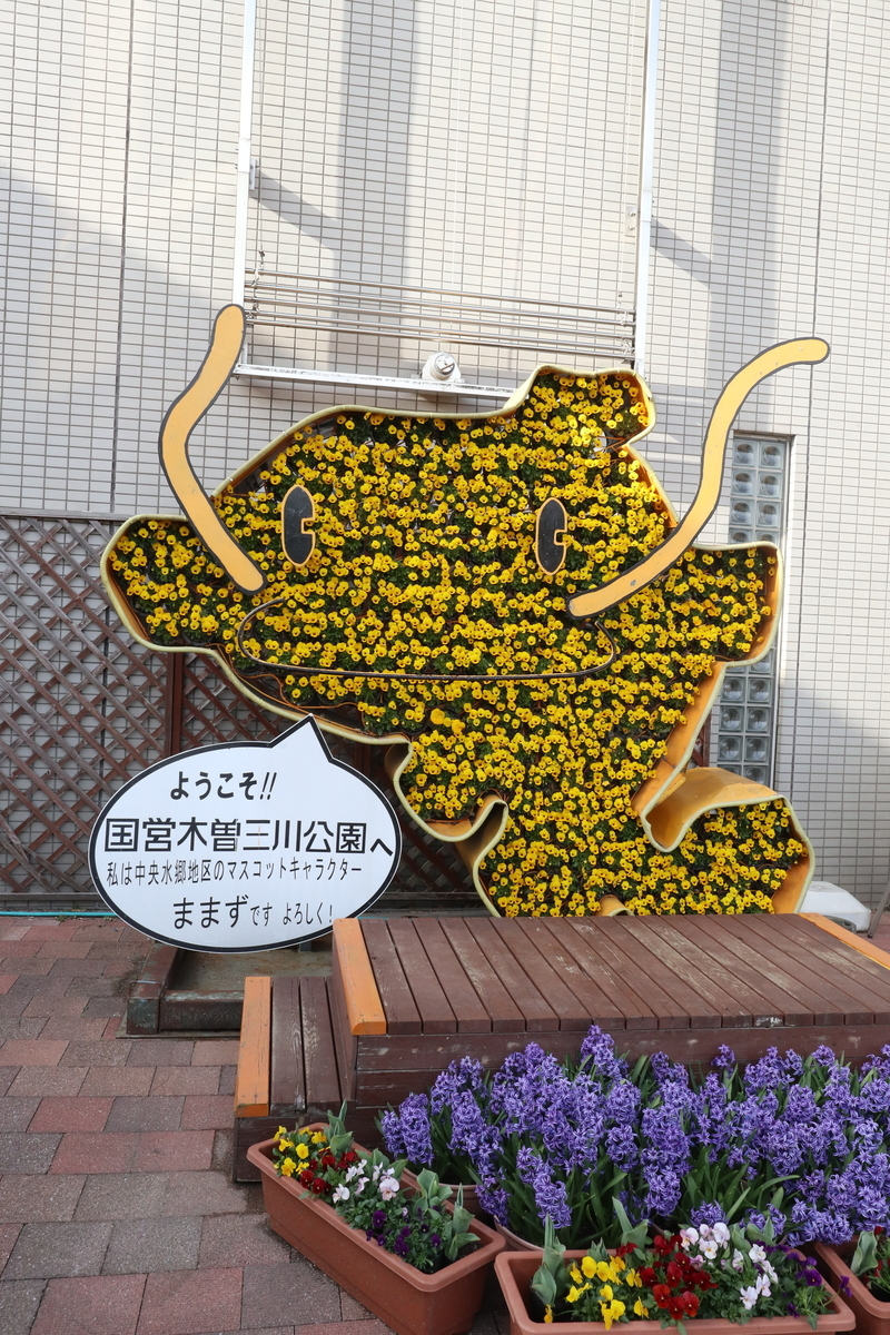 f:id:takawitomoki:20210327011049j:plain