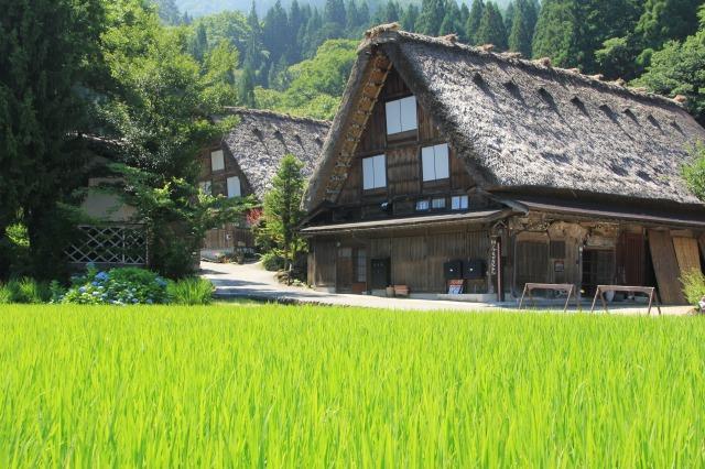 f:id:takayama-sakana:20180723105448j:plain