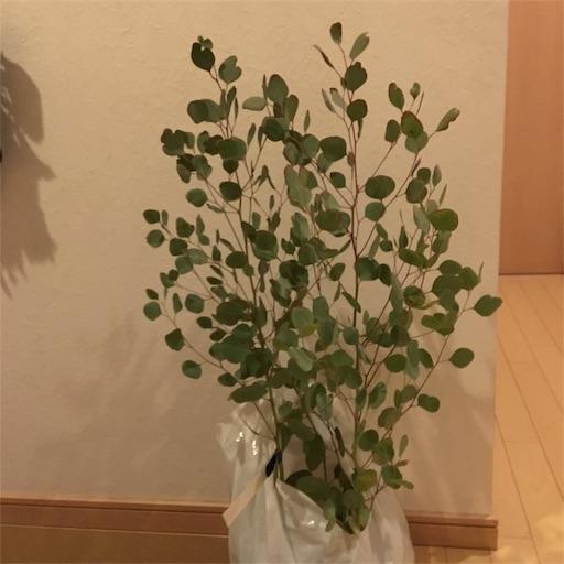 f:id:takayamakeyaki:20181125175724j:image