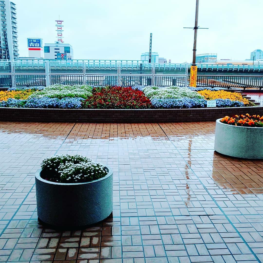 f:id:takayuki-fujii24:20191206153422j:image